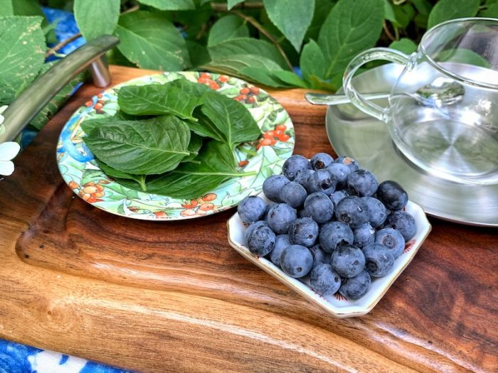 Fresh mint and blueberries for homemade tisane