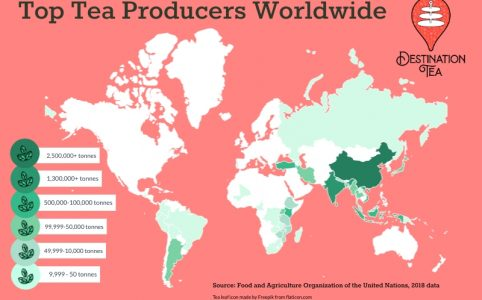 Destination Tea's map of top tea producing countries