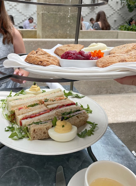 scones and sandwiches at afternoon tea at Oxford Exchange in Tampa, FL