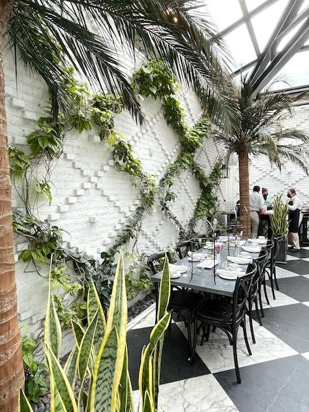 vining trellis at afternoon tea at Oxford Exchange in Tampa, FL