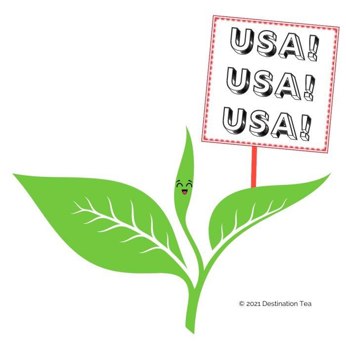 American grown tea graphic by Destination Tea